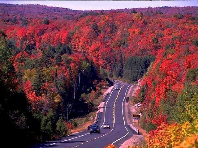 アルゴンキン州立公園